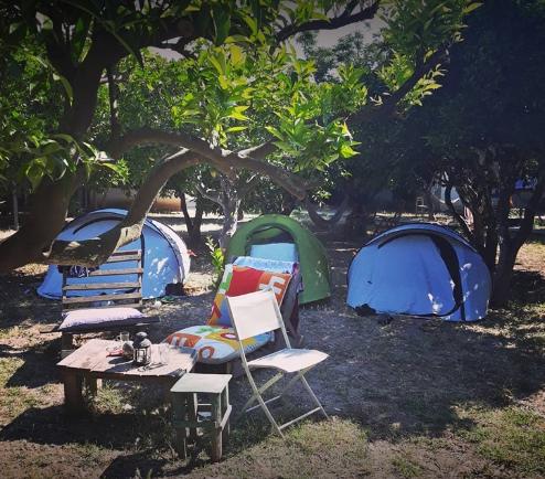 Bodrum Ecofarm & Hostel - Bodrum Çadır Kamp Yerleri