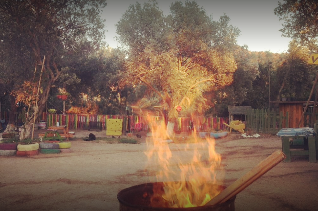 Bodrum Volo Camping